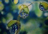 "\"" Symphonie \"" - pastel - 50x70"